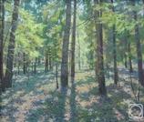 В весеннем лесу. 50х60см. х.м.